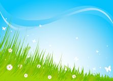 Meadow praise background Royalty Free Stock Photo