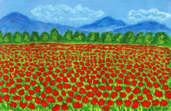Meadow with red poppies, painting Stock Photos