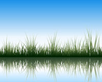 Meadow with reflection Stock Photo