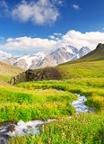 Meadow and river. Green meadow and river. High mountains and clouds Stock Photography