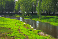Meadow on riverbank Royalty Free Stock Photos
