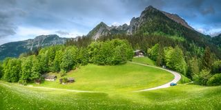 Meadow with road in Berchtesgaden National Park. Beautiful view of meadow near Jenner mount in Berchtesgaden National Park with cows, Upper Bavarian Alps royalty free stock image