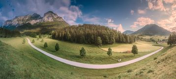Meadow with road in Berchtesgaden National Park. Beautiful view of meadow near Jenner mount in Berchtesgaden National Park with cows, Upper Bavarian Alps royalty free stock photos