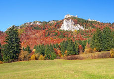 Meadow and rocks in Vratna Valley, Slovakia Royalty Free Stock Photos