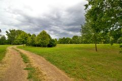 Meadow in rural areas Royalty Free Stock Photo
