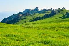 The meadow scenic Stock Photo