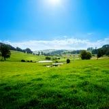 meadow sceniczna Obraz Royalty Free
