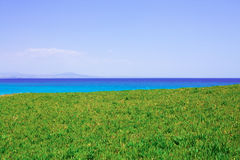 Meadow and sea Royalty Free Stock Photo