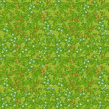Meadow seamless pattern Stock Photography