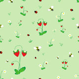 Meadow seamless pattern. Strawberry meadow seamless pattern. Forest background for kids. Print for children Stock Photography
