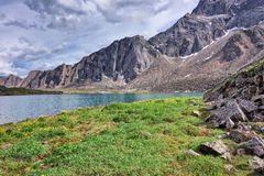 The meadow on the shore of a mountain lake Royalty Free Stock Photos