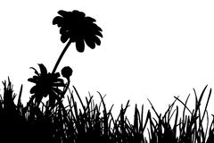 Meadow Silhouette Royalty Free Stock Photography