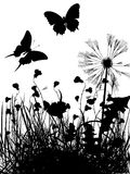 Meadow silhouette. Meaddow and butterflies silhouettes over white background Stock Images