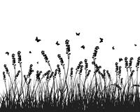 Meadow silhouettes. Vector grass silhouettes background. All objects are separated Stock Image