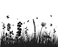 Meadow silhouettes Stock Image