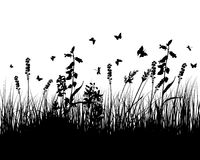 Meadow silhouettes. Vector grass silhouettes background. All objects are separated Royalty Free Stock Photo