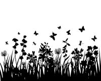 Meadow silhouettes. Vector grass silhouettes background. All objects are separated Stock Photos