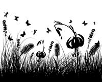 Meadow silhouettes. Vector grass silhouettes background. All objects are separated Stock Photography