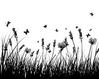 Meadow silhouettes Stock Photography