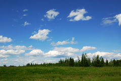 Meadow and sky royalty free stock images