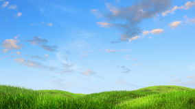 Meadow and sky background stock footage