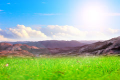 Meadow and sky Stock Photos