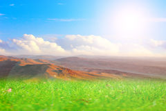 Meadow and sky Royalty Free Stock Photos