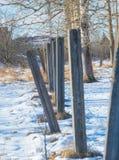 Meadow with the snow dug where the concrete pillars near the trees. Concrete pillars and trees with snow Stock Photos