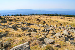 Meadow with stones in Harz. View of stone landscape on the mountain Brocken in national park Harz, Germany Royalty Free Stock Photography