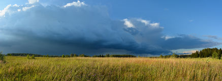 Meadow and storm cloud in sunset light landscape Stock Image