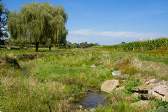 Meadow Stream Royalty Free Stock Photos