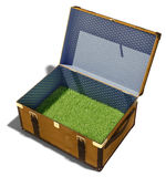 Meadow in suitcase. Green grass meadow, as the contents of a vintage suitcase Royalty Free Stock Image