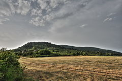 Meadow in summer, Pyrenees Royalty Free Stock Photos