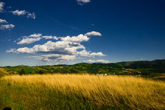 Meadow on a Sunny Day. Meadow with hills in the background on a bright sunny day stock photos
