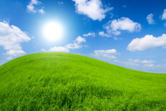 Meadow and sunny sky. Green meadow and sunny sky Royalty Free Stock Photos