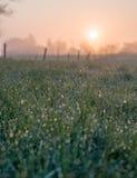 Meadow sunrise Royalty Free Stock Photos