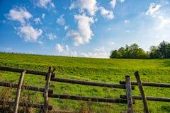 Meadow with sunshine stock photo