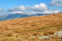 Meadow in Tatra mountains, Poland Royalty Free Stock Image