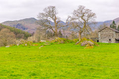 Meadow with traditional stone barn in The Lake District, Cumbria, England. Stock Photo