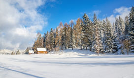 Meadow without trails and mountain hut in winter Stock Images