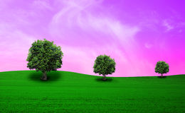 Meadow with tree Stock Image