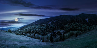 Meadow with trees in mountains at night. Mountain landscape. hillside with trees on green grassy meadow near foggy mountains under overcast sky at night in full royalty free stock photos