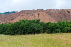 Meadow Trees and Sandstone at Roxborough Stock Photography