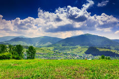 Meadow with trees and shrubs in mountains massif away in the bac. Large meadow with few deciduous trees and shrubs in the foreground. clouds over the mountainous Stock Photos