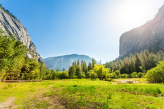 Meadow and trees surrounded by rocky mountains Stock Photos