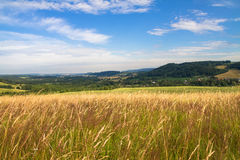 Meadow under blue sky with clouds Stock Images