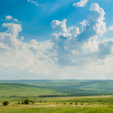 Meadow under the Blue Sky Royalty Free Stock Images
