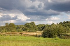 Meadow under cloudy sky. Partly abandoned natural meadows under summertime cloudy sky Stock Photos