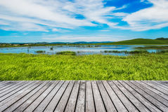 Meadow under the sky . Stock Photos