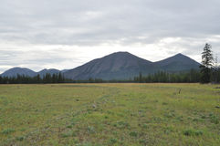 Meadow in the valley among the mountains of Yakutia. Stock Photography